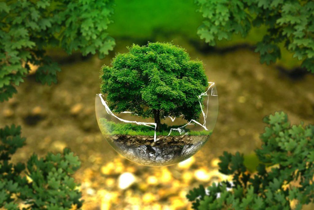 nettoyage ecologique paris 15